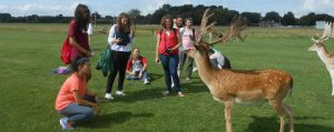 Central School of English students with deer in Phoenix Park